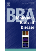"BBA Molecular Basis of Disease, accepted for publication our paper entitled ""Site-specific effects of apolipoprotein E expression on diet-induced obesity and white adipose tissue metabolic activation"""