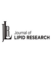 Apolipoprotein C3, a critical apolipoprotein for hypertriglyceridemia, exerts pleiotropic effects on HDL Functionality and Adipose Tissue Metabolic Activity